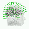 Brainstorm 2.0: USC's Widely Used Brain Imaging Software Gets an Upgrade