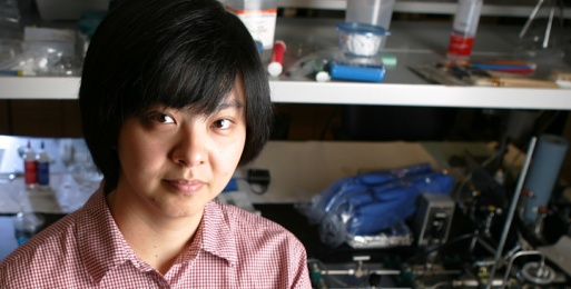 Ellis Meng Receives Award from ASEE Engineering Research Council