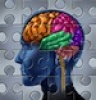 LiveScience Examines the Possibility of Restoring Memories in Humans