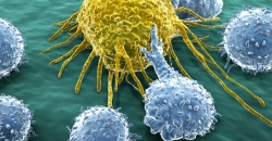 What if this protein holds the key to a new dimension in cancer immunotherapy?